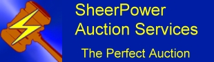 The Perfect Auction